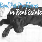 Pets and Real Estate
