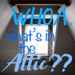 WHOA, What's in the Attic??